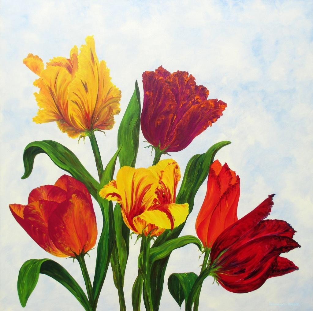 Tulpen uit Maasgouw