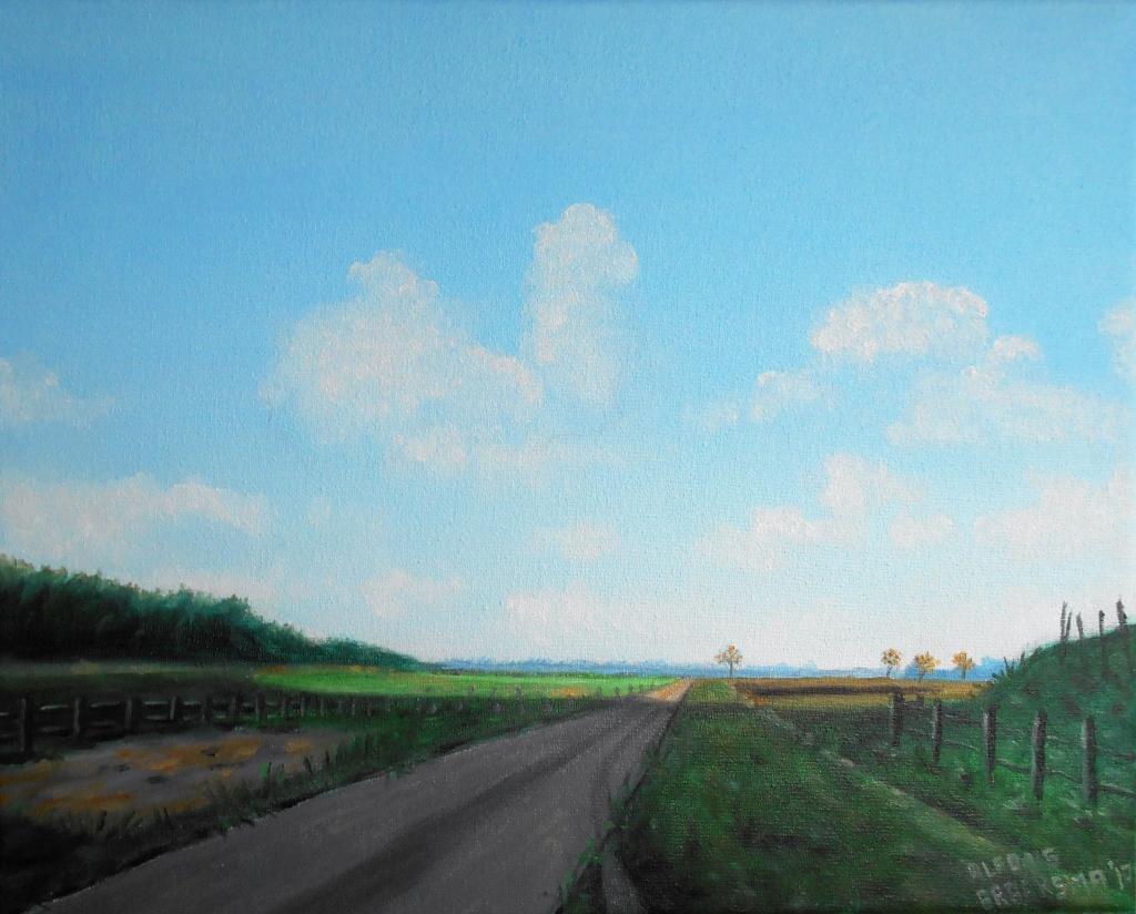 Gronings landschap II